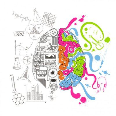 5 ventajas únicas de los programas educativos de la Sociedad Colombiana de Apiterapia